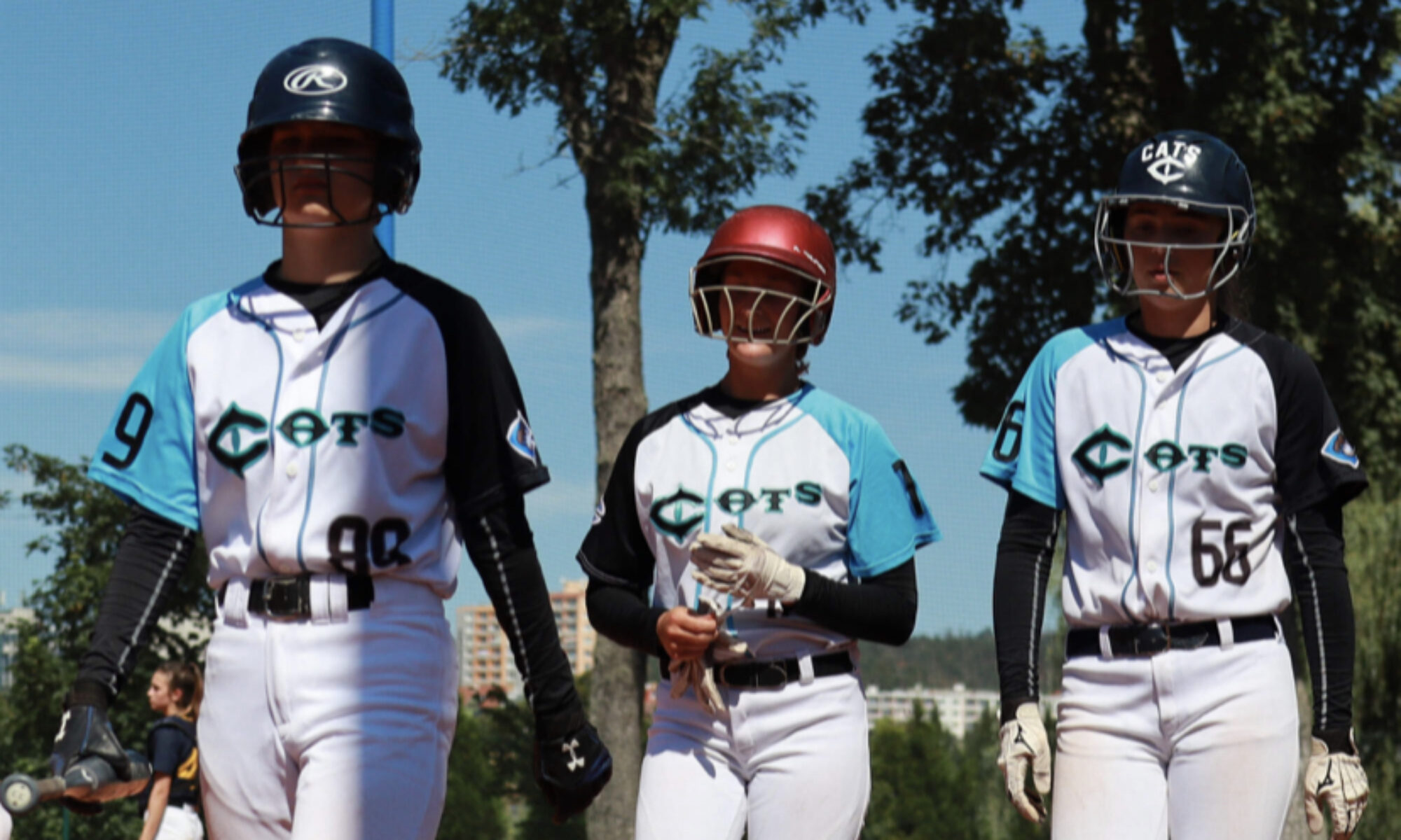 Cats Brno | softball